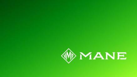 MANE Is Pleased to Promote Staff